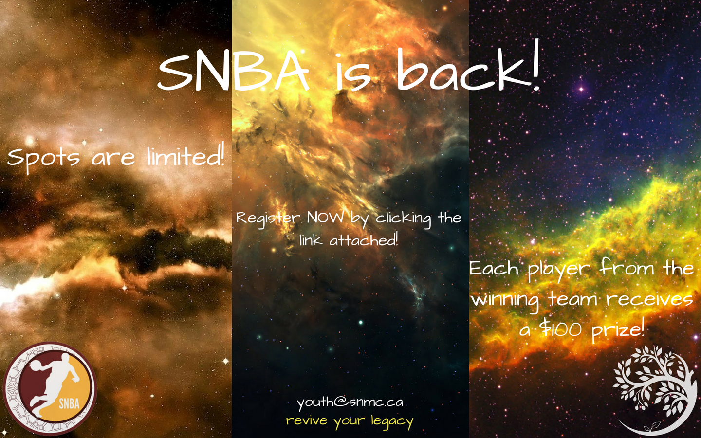 SNBA registration. (correction)